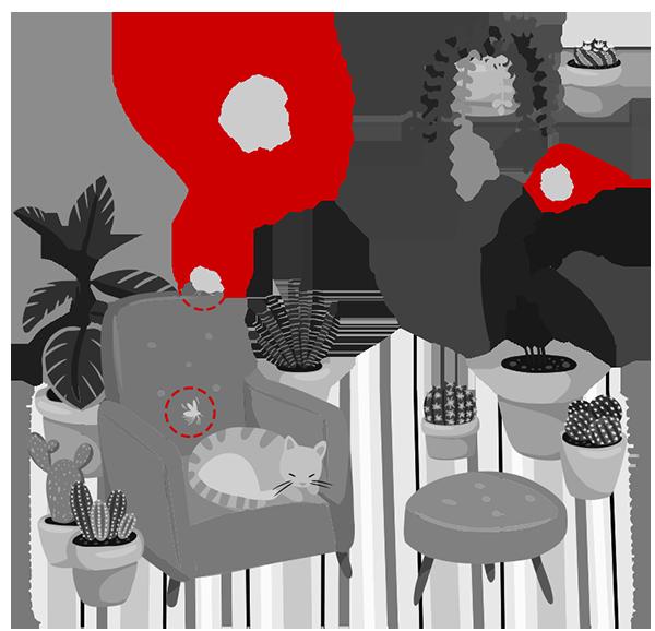 3D Pest Control Koh Samui